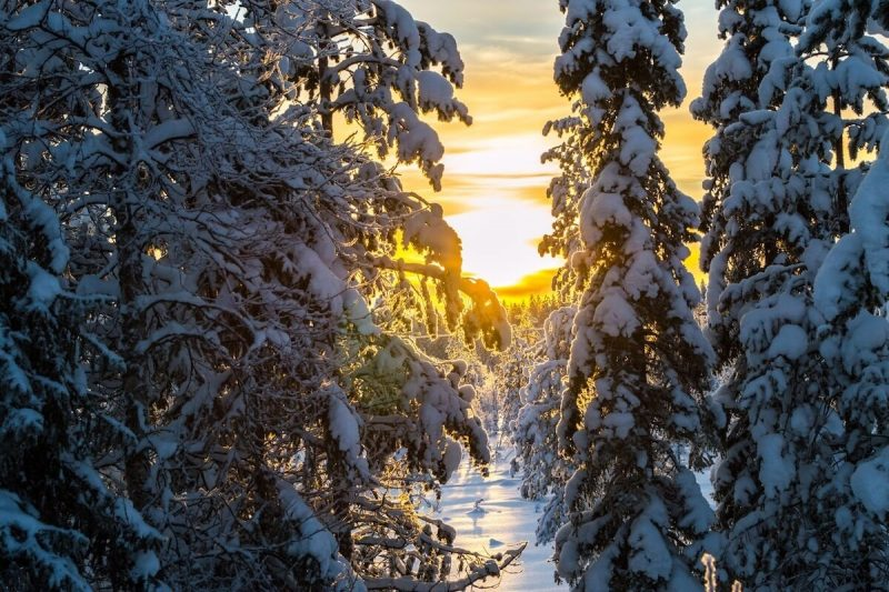 Lapland, the Narnia of Europe