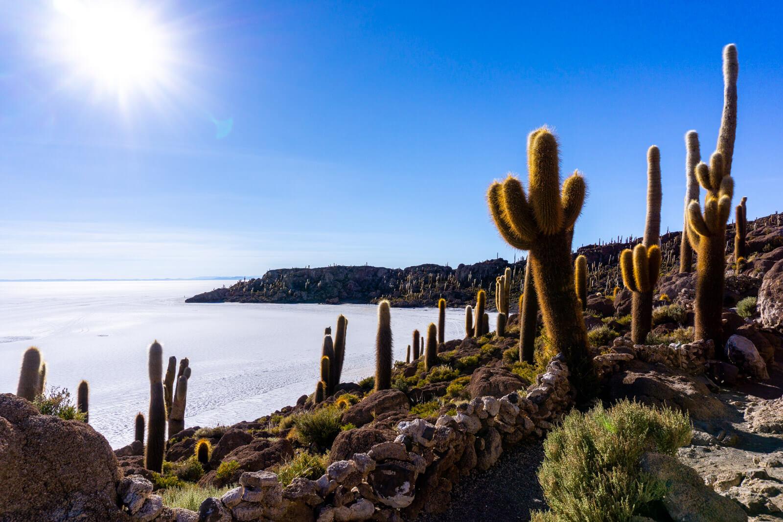 Hiking to the Top of the Cactus Island in the Salar de Uyuni