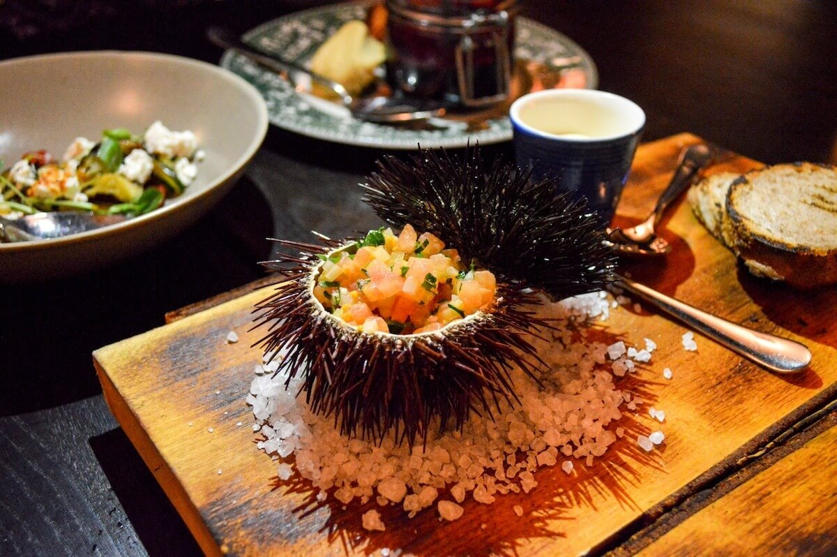 Sea Urchin at Grotesk