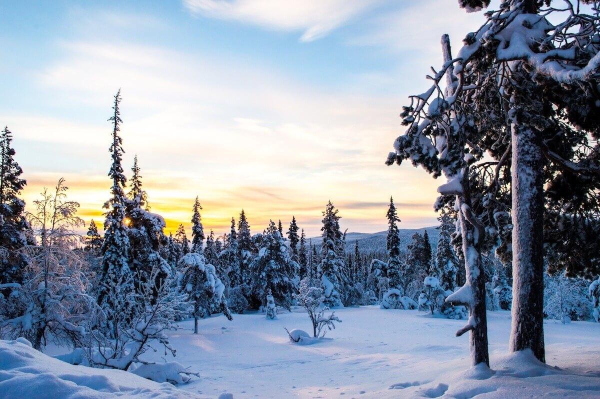 Sunrise at Lapland