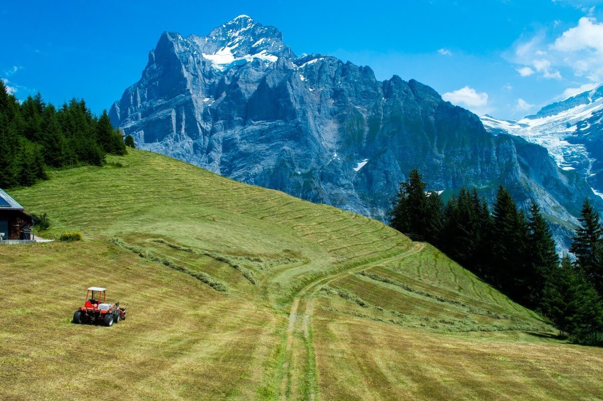 Alpine life at Grindelwald First, Jungrau region