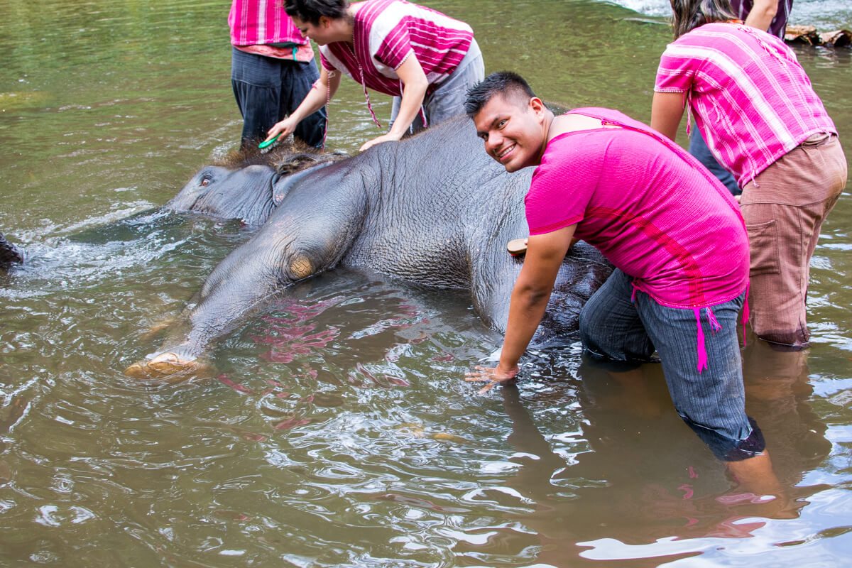 Elephant Riding in Chiang Mai 08