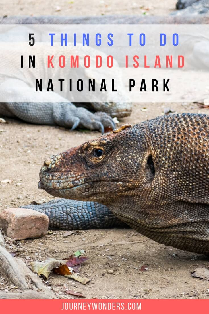 Would you like to have an incredible Jurassic World Experience? Here's the Top 5 Wonders to see in the Komodo National Park in Indonesia including Padar Island and Labuan Bajo.