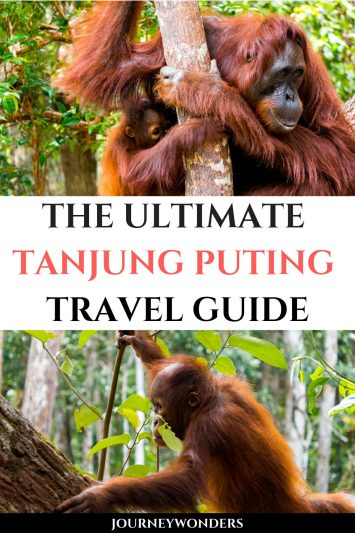 The Ultimate Tanjung Puting Travel Guide Borneo Indonesia Asia Travel