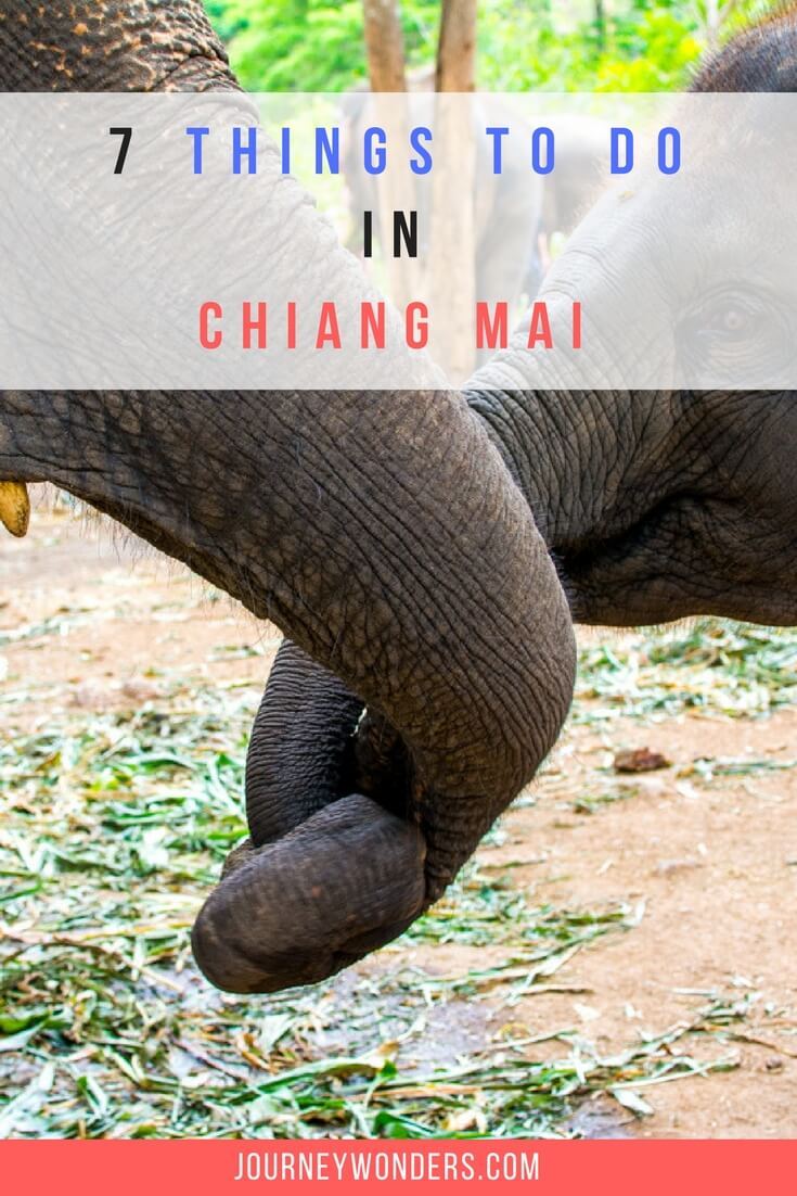 Warning: This isn't your average Chiang Mai article. Here you will find many things to do and see in Chiang Mai, Thailand but also some of the worst animal abuse practices of the country. You've been warned.