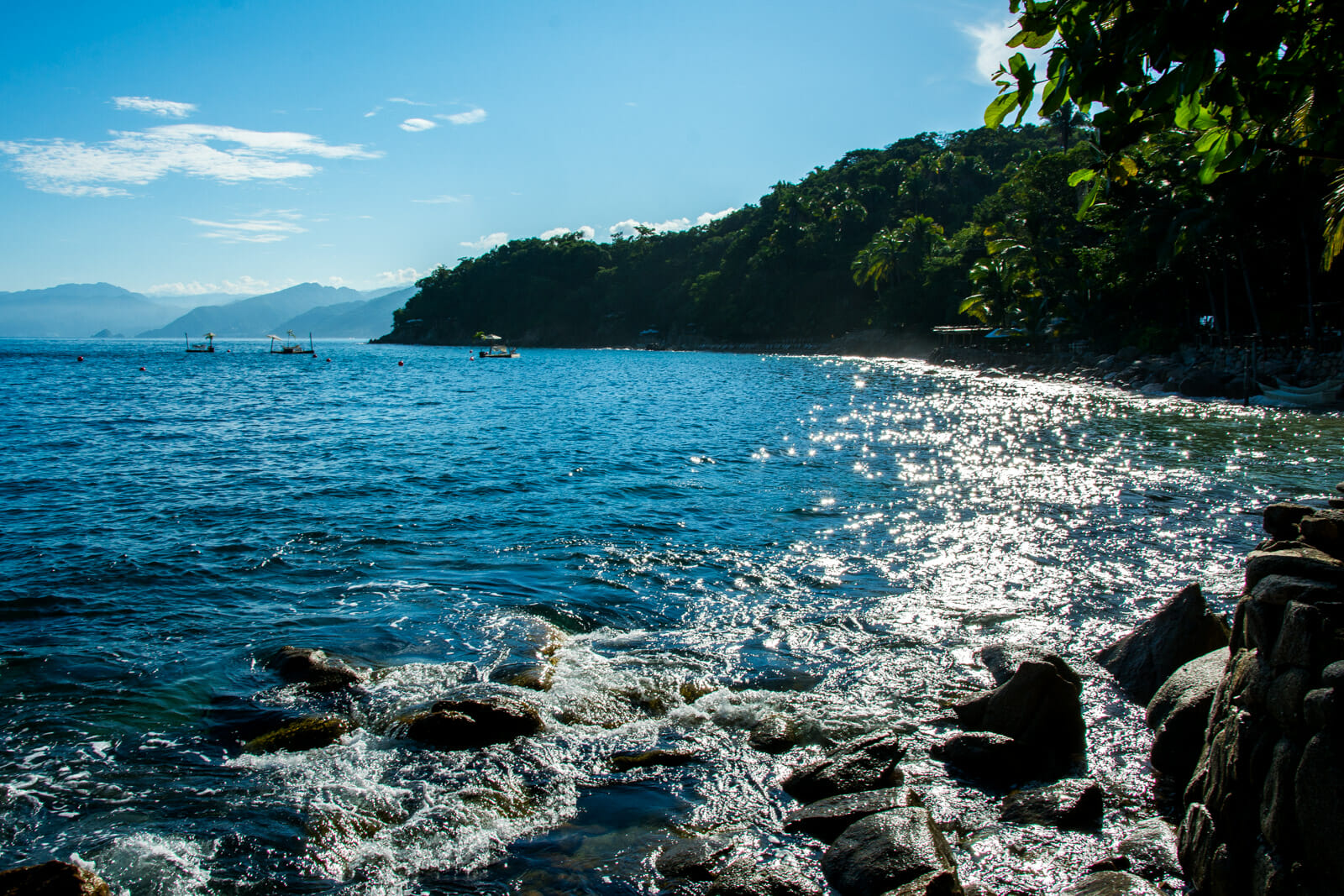 The Waters of Riviera Nayarit
