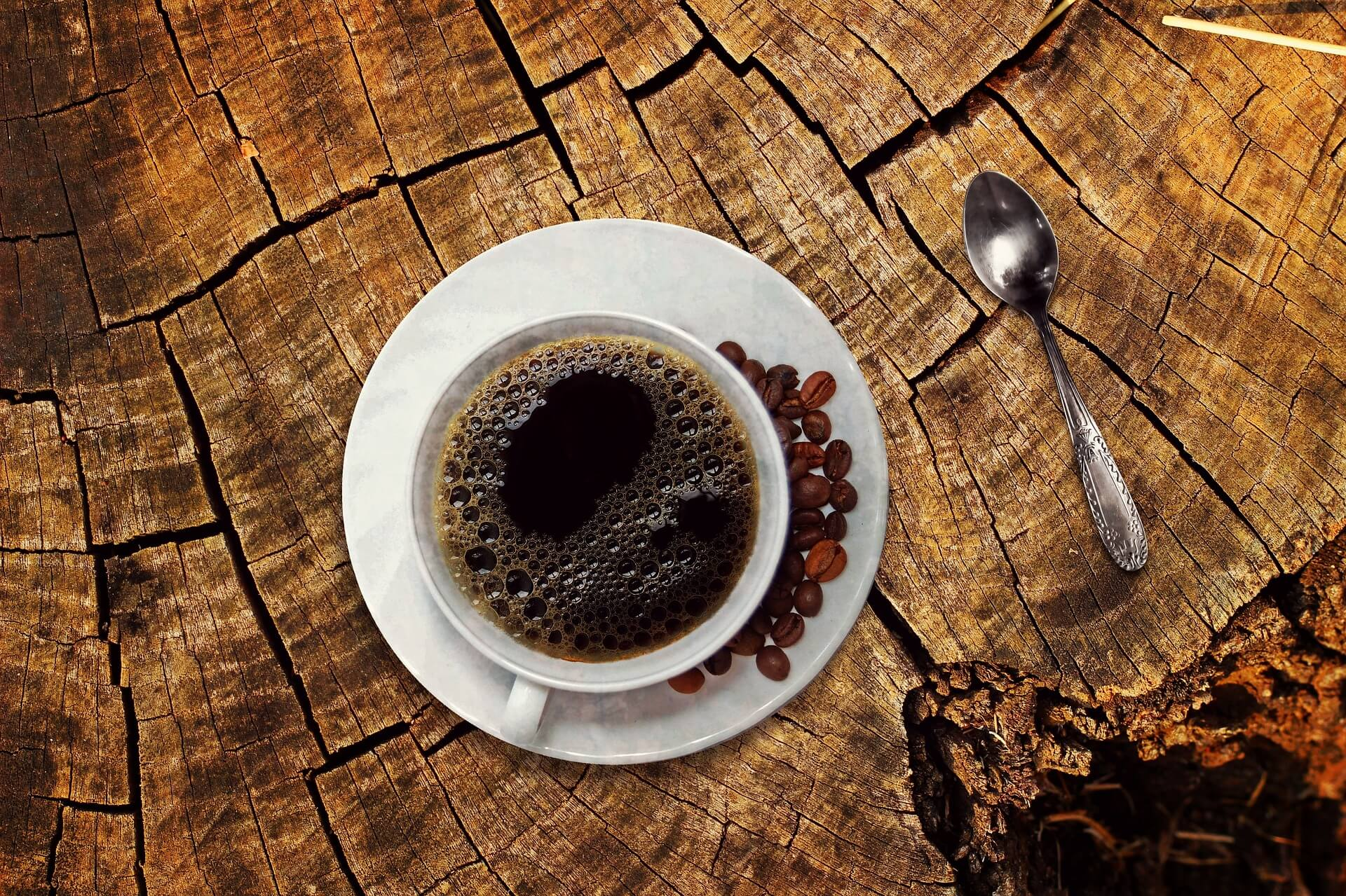 Coffee, one of Chiapas main exports