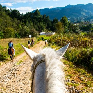 Things to do in San Cristobal de las Casas, Horseback ride to Chamula