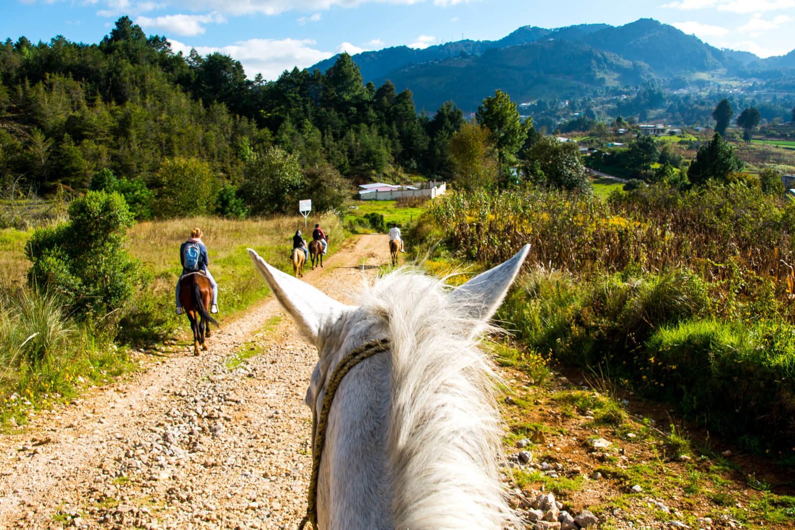 Things to do in San Cristobal de las Casas, Horseback ride to Chamula