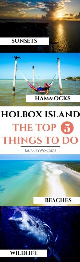 Want to explore an untouched tropical paradise in Mexico? Read all about Holbox Island here including how to get to Holbox from Cancun and the best things to do and see in Holbox. Ready for adventure? #Holbox #Cancun #RivieraMaya