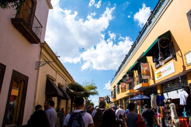 Tequila Day Trip Guadalajara