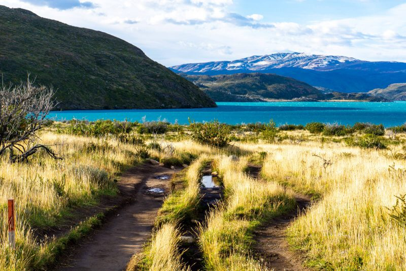 Torres del Paine W Trek, the best multi day hike of wonders