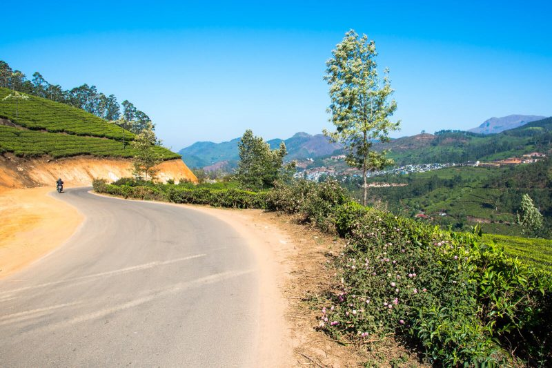 Trekking in Munnar, Kerala: Places to Visit in Munnar in 1 Day
