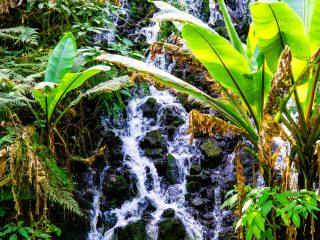 The Uruapan National Park of Wonders