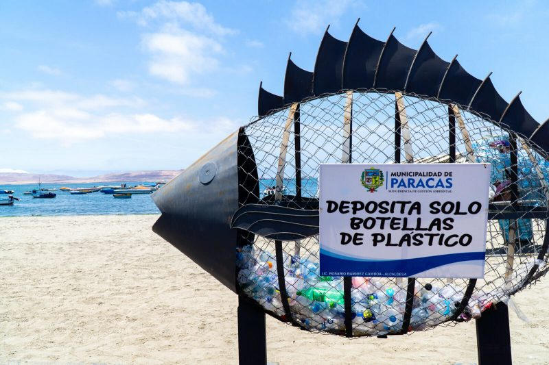 The Best Things to Do and See in Paracas