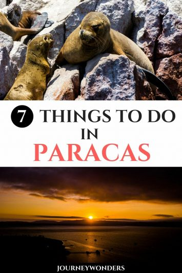 The 7 Best Things to Do and See in Paracas